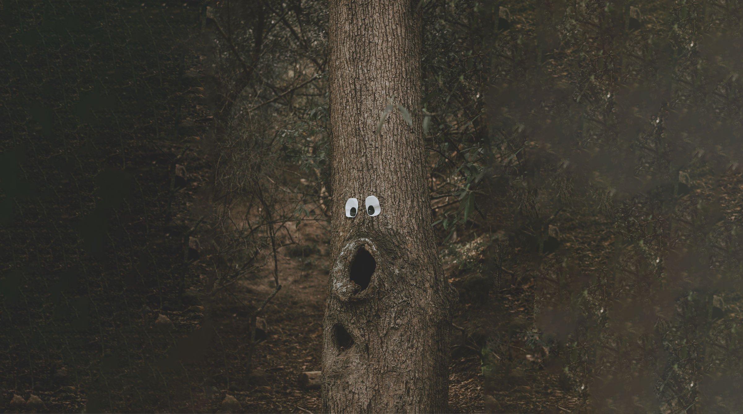SE_BF_Tree